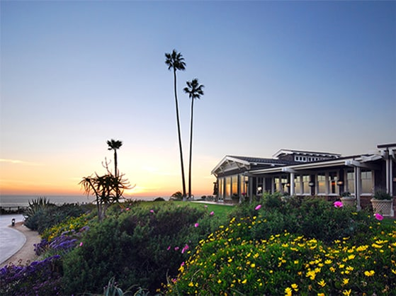 Restaurants In Laguna Beach Hotel Dining Montage Laguna Beach